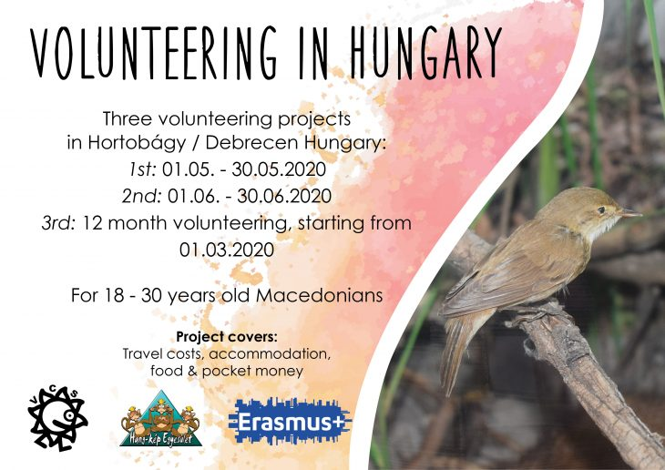 Call for volunteers for short and long term projects in Hungary!