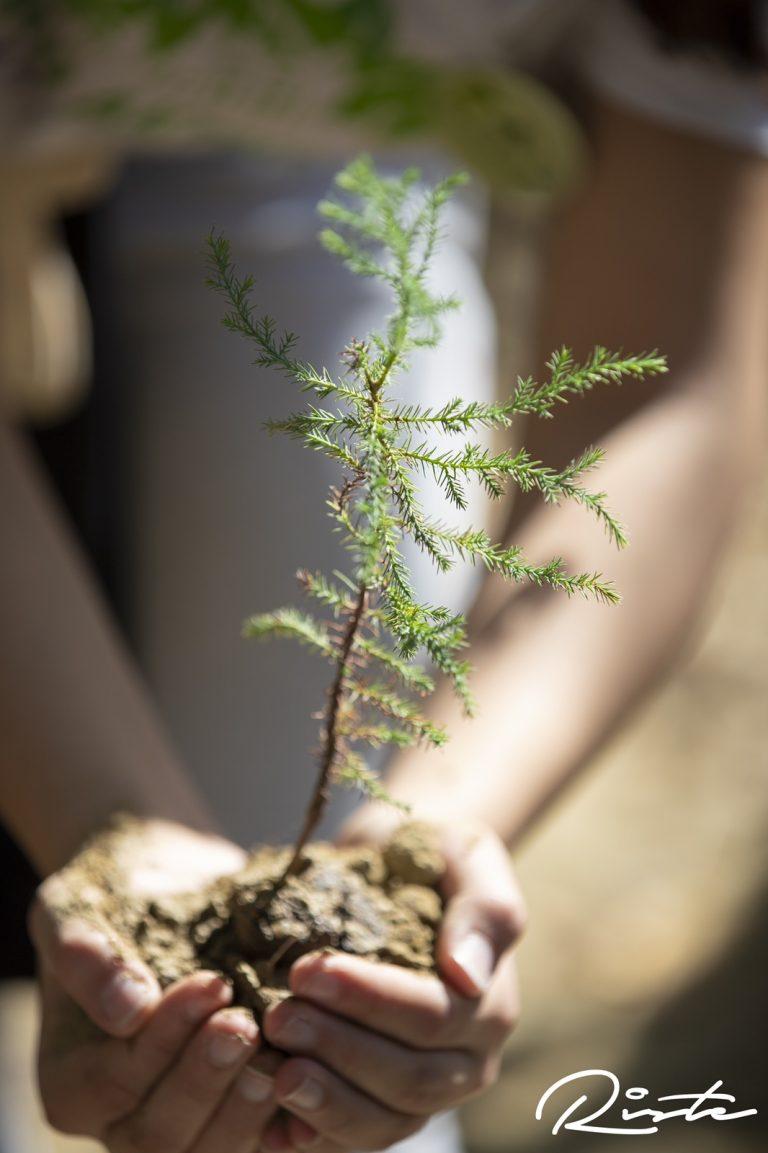 Младите ја будат свеста за здрава животна средина